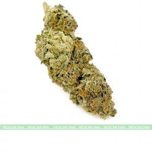 Kentucky Durban Sativa