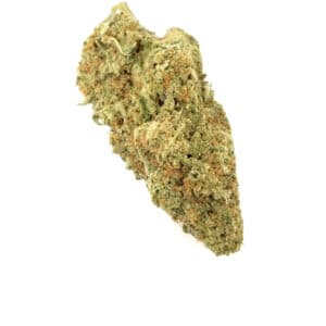 Mighty Afghani Indica